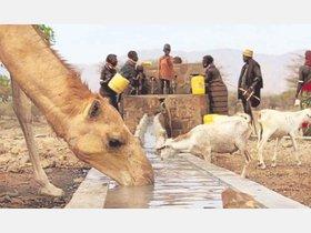 Wasser und Bildung: Arbeit der Eine-Welt-Gruppe Günne - Soester Anzeiger