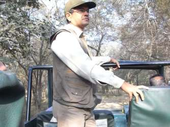 Safari im Ranthambore Nationalpark im Norden Indiens