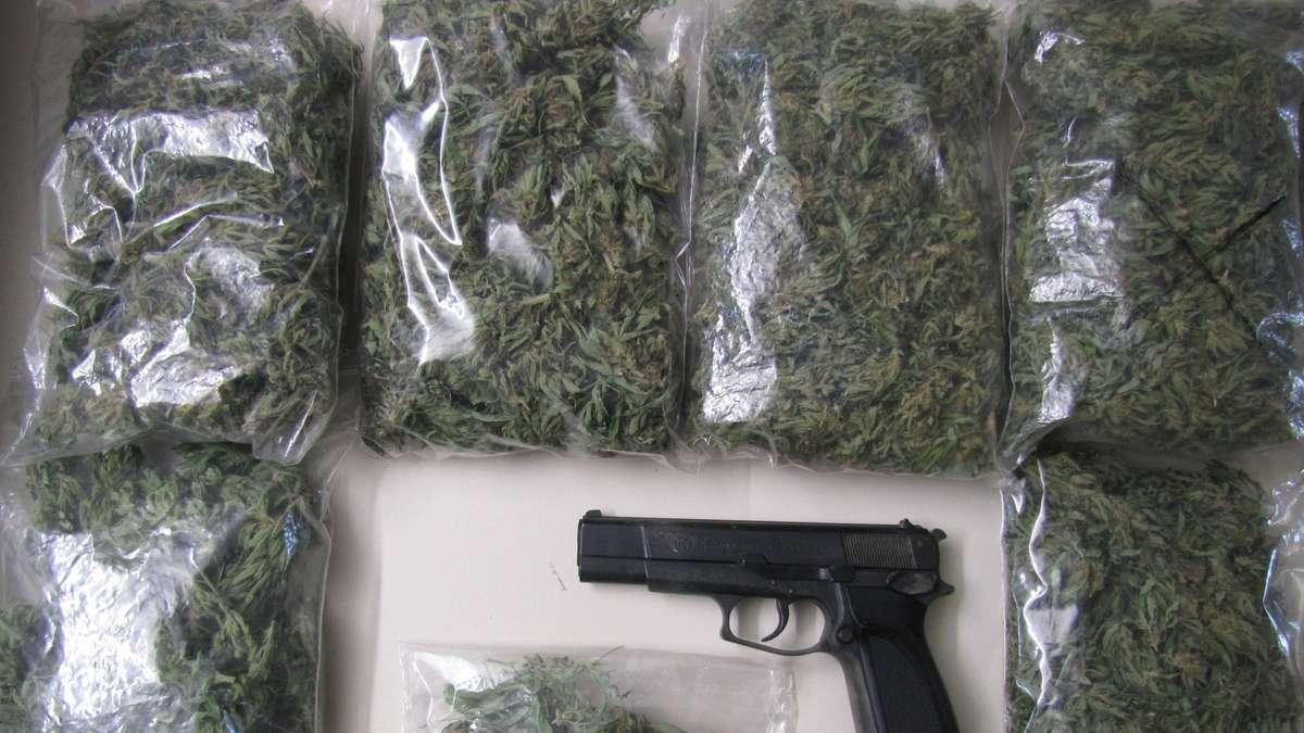 polizei durcht wohnung in ense cannabispflanzen im keller. Black Bedroom Furniture Sets. Home Design Ideas