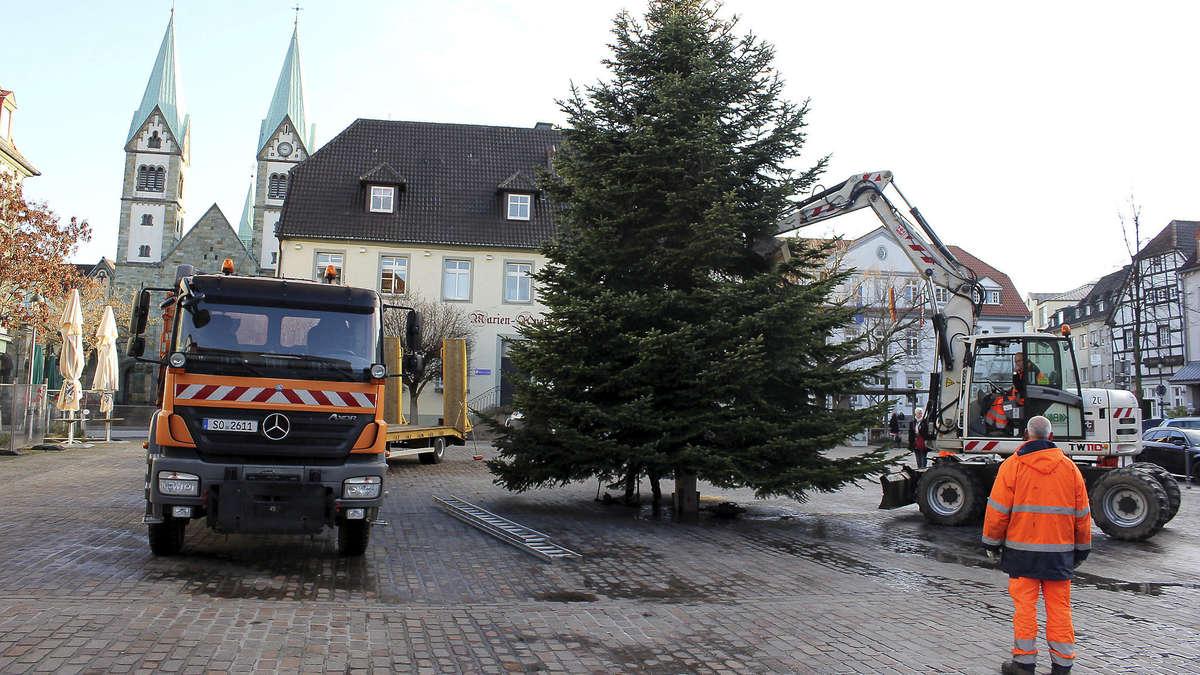 mitarbeiter des kommunalbetriebs haben weihnachtsbaum auf werler marktplatz aufgestellt werl. Black Bedroom Furniture Sets. Home Design Ideas