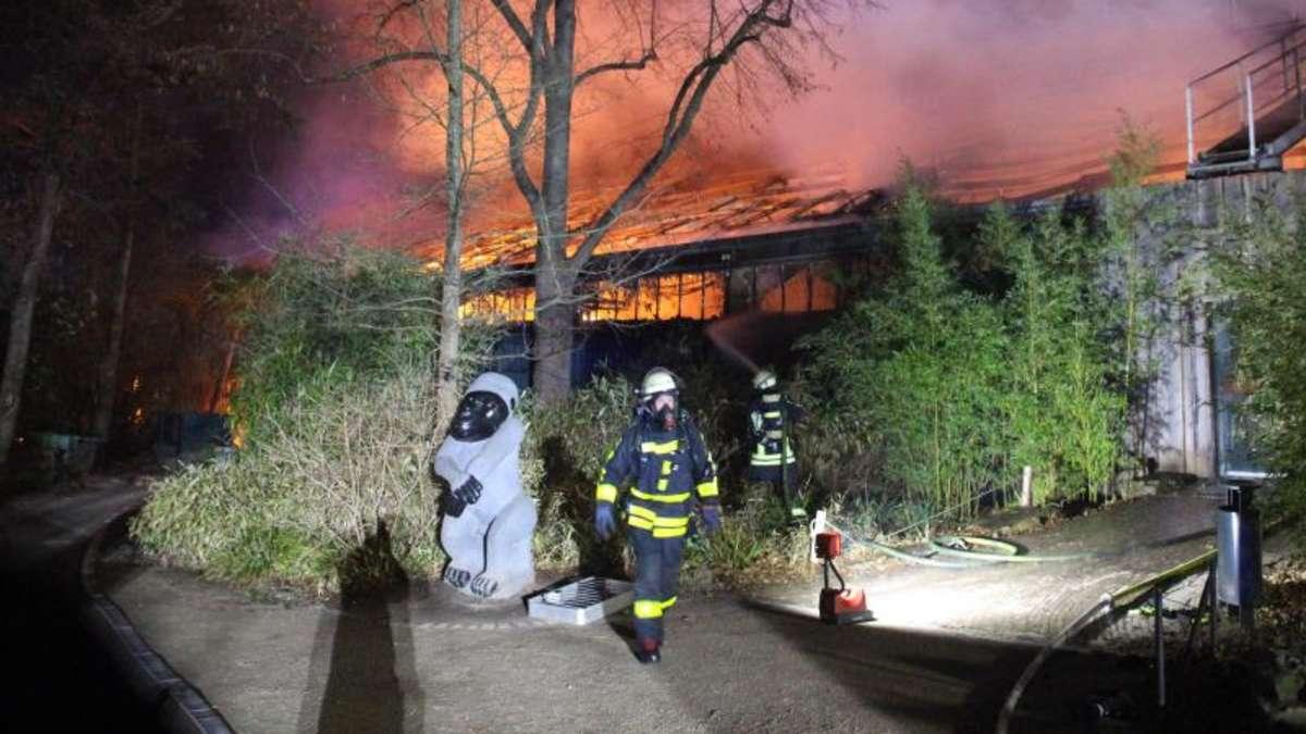 Brand Affenhaus Krefeld