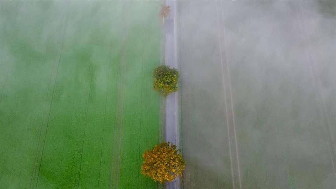 Oktober Leserbild Chantal Anders